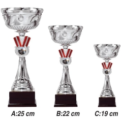 Spor Dalları İçin Kupalar 3319