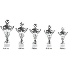 Spor Dalları İçin Kupalar X0110